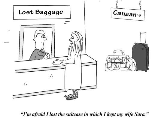 tph sara suitcase