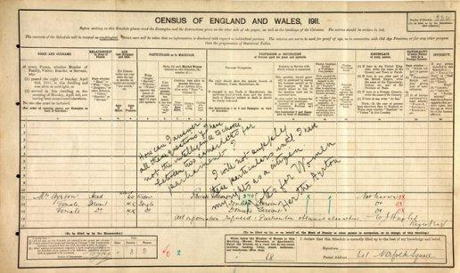 tph Ayrton protest census form