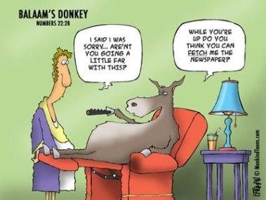 tph balaams_donkey