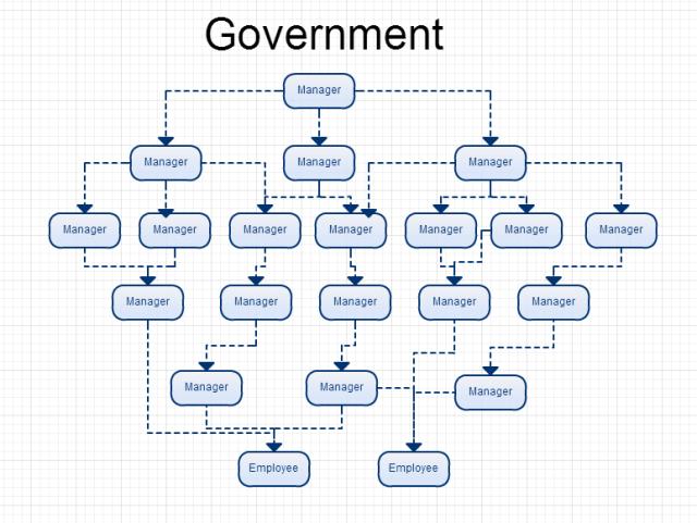 tph govt org chart