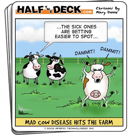 tph mad cow