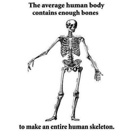 tph skeleton