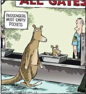 tph kangaroo