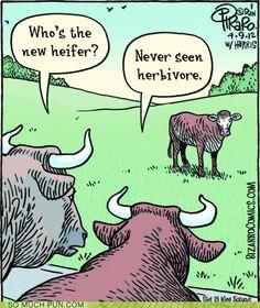 tph cow herbivore
