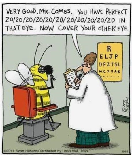 tph bee eye exam 2