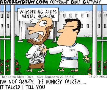 tph donkey talked